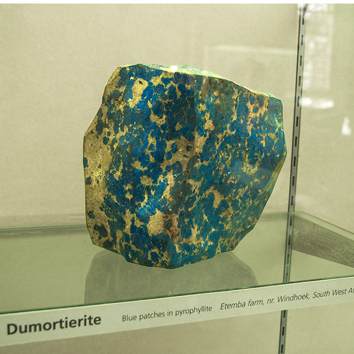 inclusions of dumortierite in the mineral pyrophyllite. In a museum display cabinet