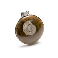 sterling silver pendant featuring a polished cabochon with an imprint of an ammonite