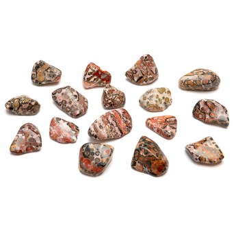 collection of leopardskin jasper tumbled stones